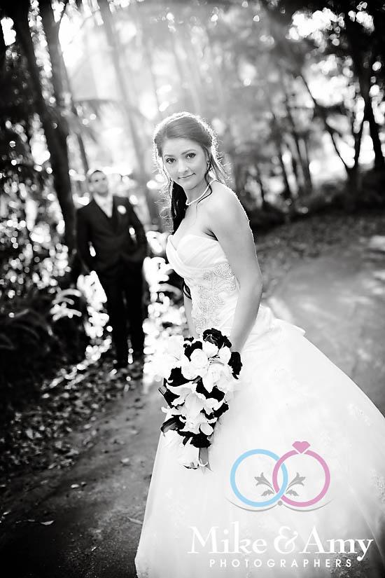NL Wedding CHR-578 copyv2