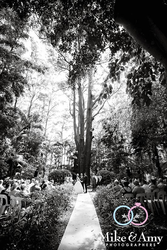WEDDING CHR-276v