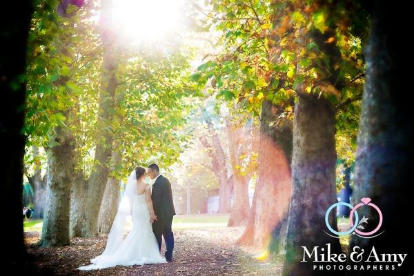 JS WEDDING CHR-893