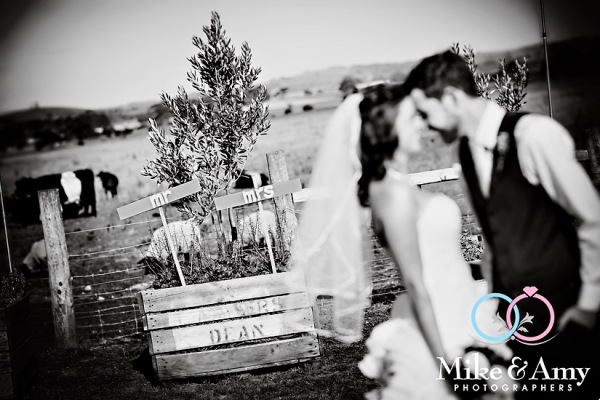 SM WEDDING CHR-739v