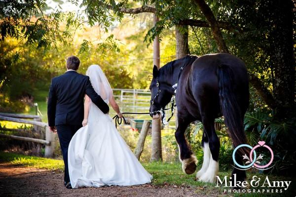 TB WEDDING CHR-675